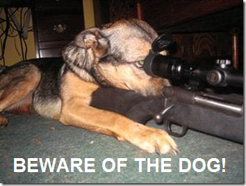 beware-of-the-dog